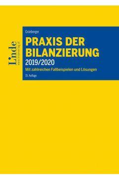 Praxis der Bilanzierung 2019/2020
