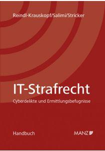 IT-Strafrecht Cyberdelikte und Ermittlungsbefugnisse
