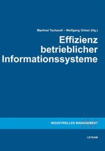 Effizienz betrieblicher Informationssysteme