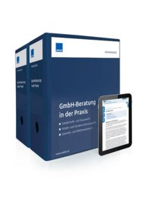 GmbH-Beratung in der Praxis